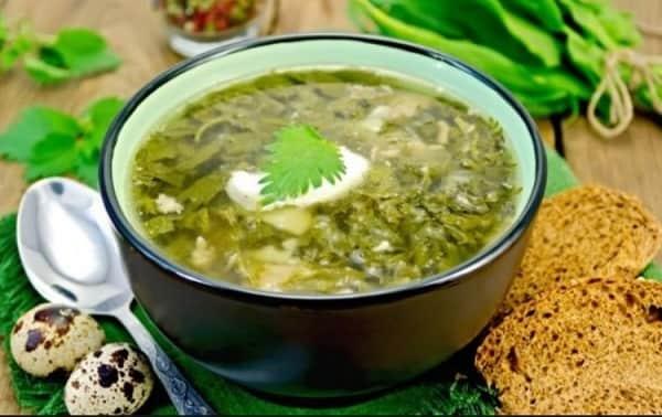 Зеленый борщ с щавелем рецепт с крапивой