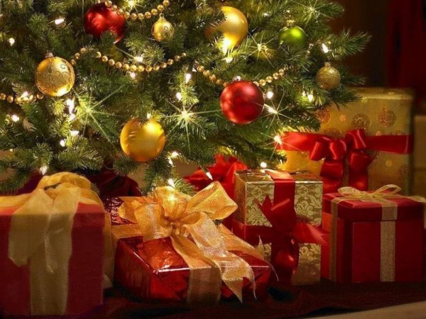 Что подарить на Новый год 2019: идеи подарков с фото по знакам зодиака